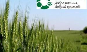 Купить семена озимой пшеницы Тацитус (Saatbau Linz) в Харькове