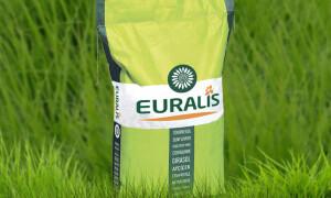 Семена подсолнечника Евралис ЕС Белла (Испания)